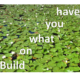 innovation_pic-lily_pads-jpg